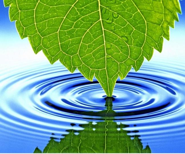 water_texture2358crop_300x250